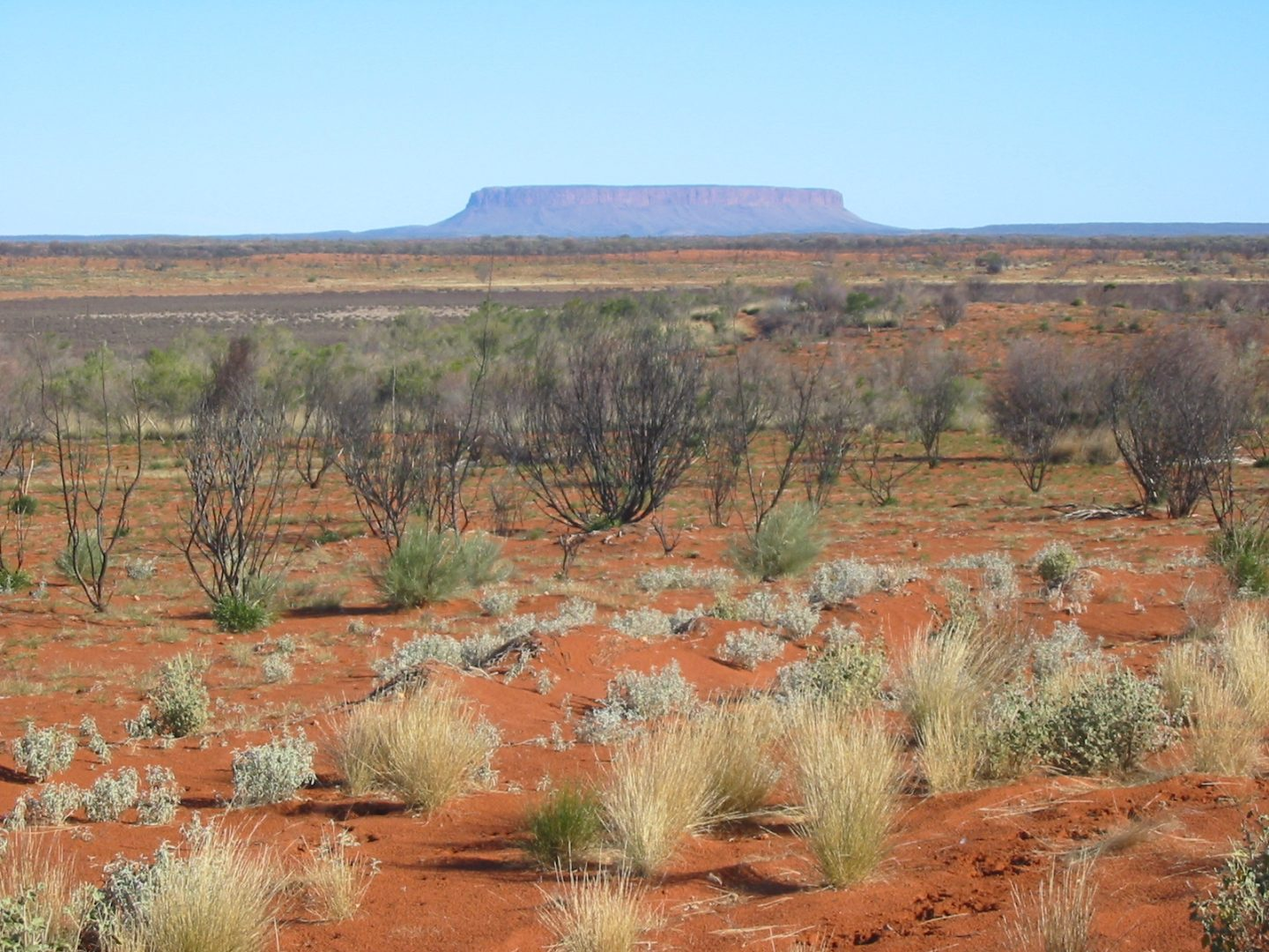 Outback 1440x1080 - Fifteen Things To Do In Australia!